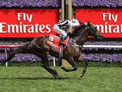 Rebel Raider wins VRC Derby(Gr.1) 2008