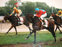Reel Line wins Petit Prix 1993, Silke Pieterse up